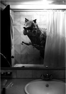 baño con vinilo 5